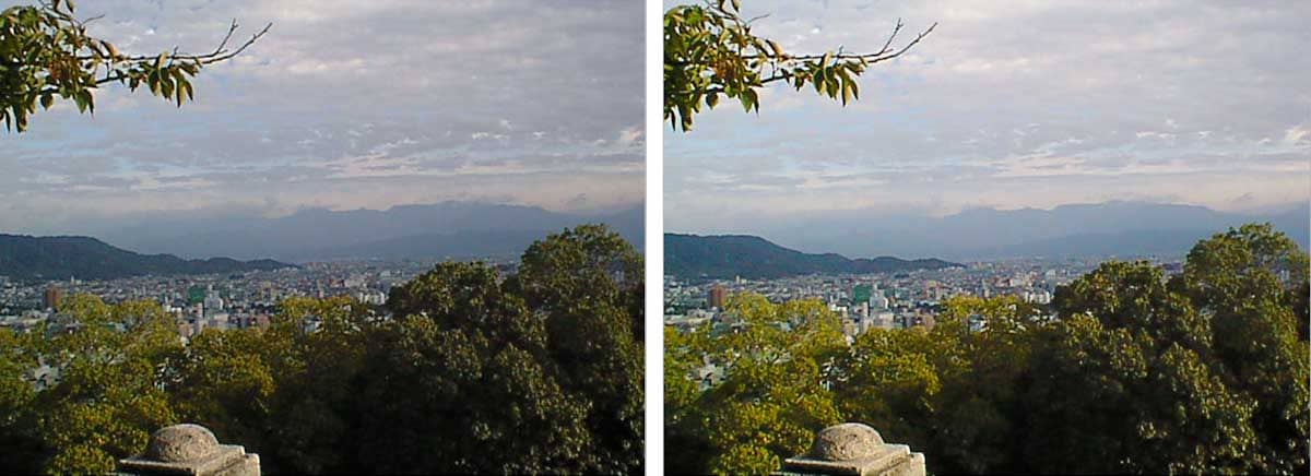 松山市の街並みが見える景色