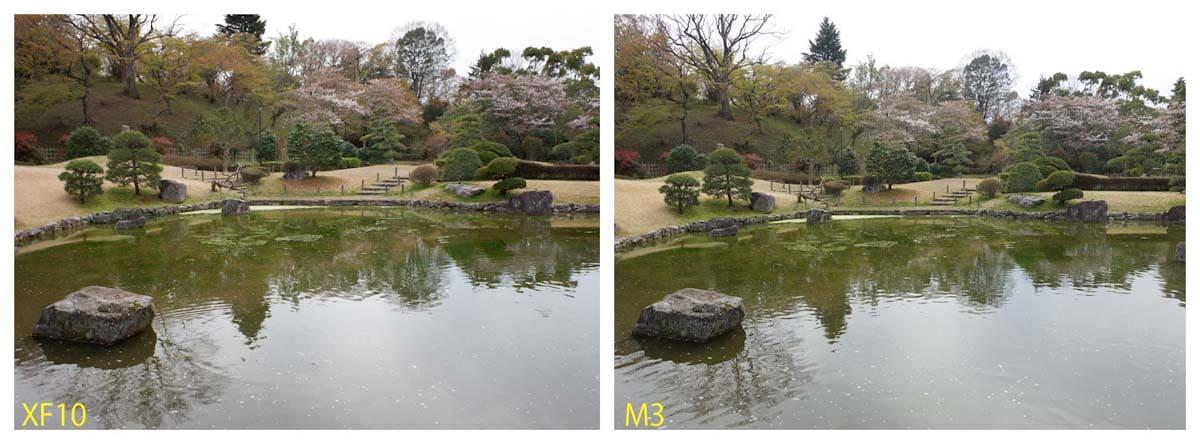 公園にある庭園