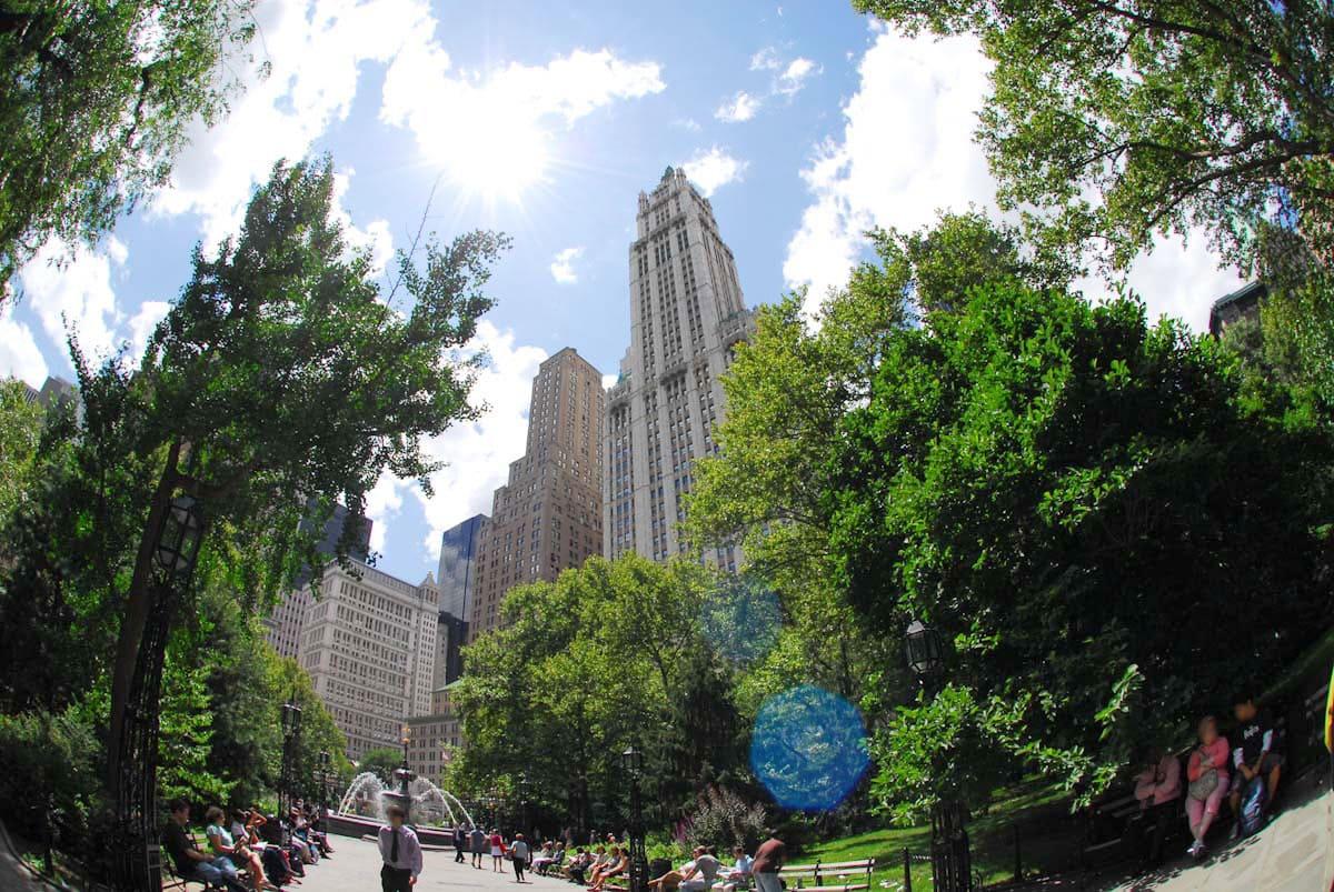 ニューヨーク・シティにある緑がたくさんの公園