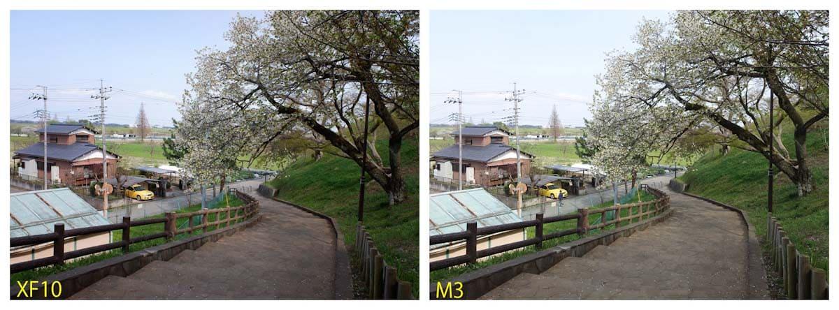公園の石段