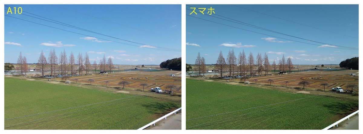 公園の風景模様を比較した写真
