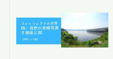 【フィッシュアイの世界】街・自然の魚眼写真を徹底公開【レンズ】