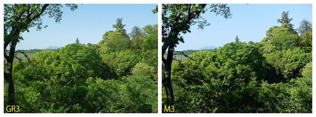 新緑の景色と筑波山
