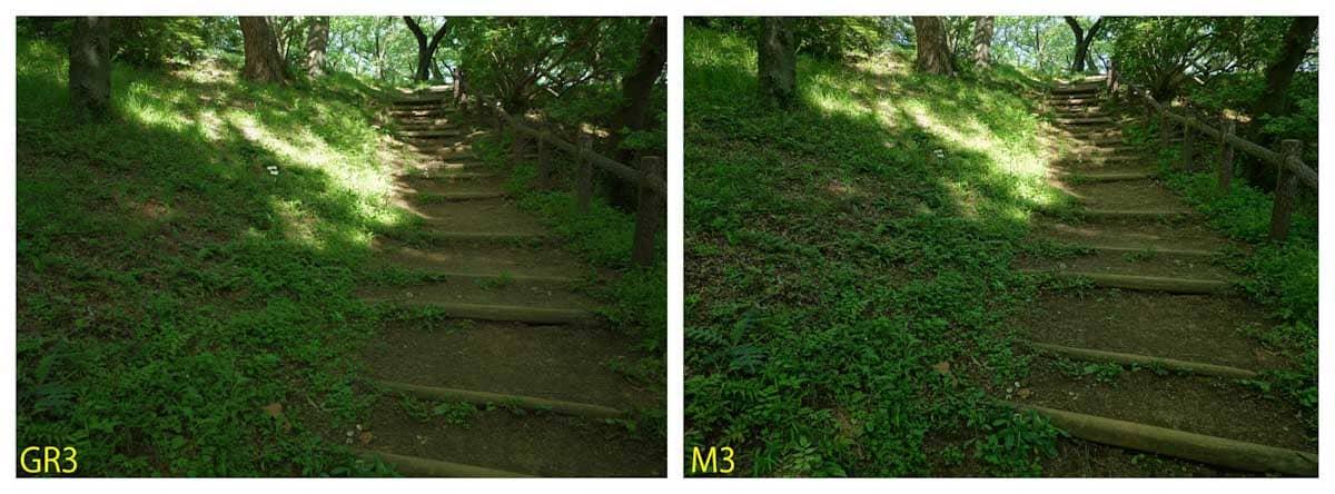 公園の歩道階段