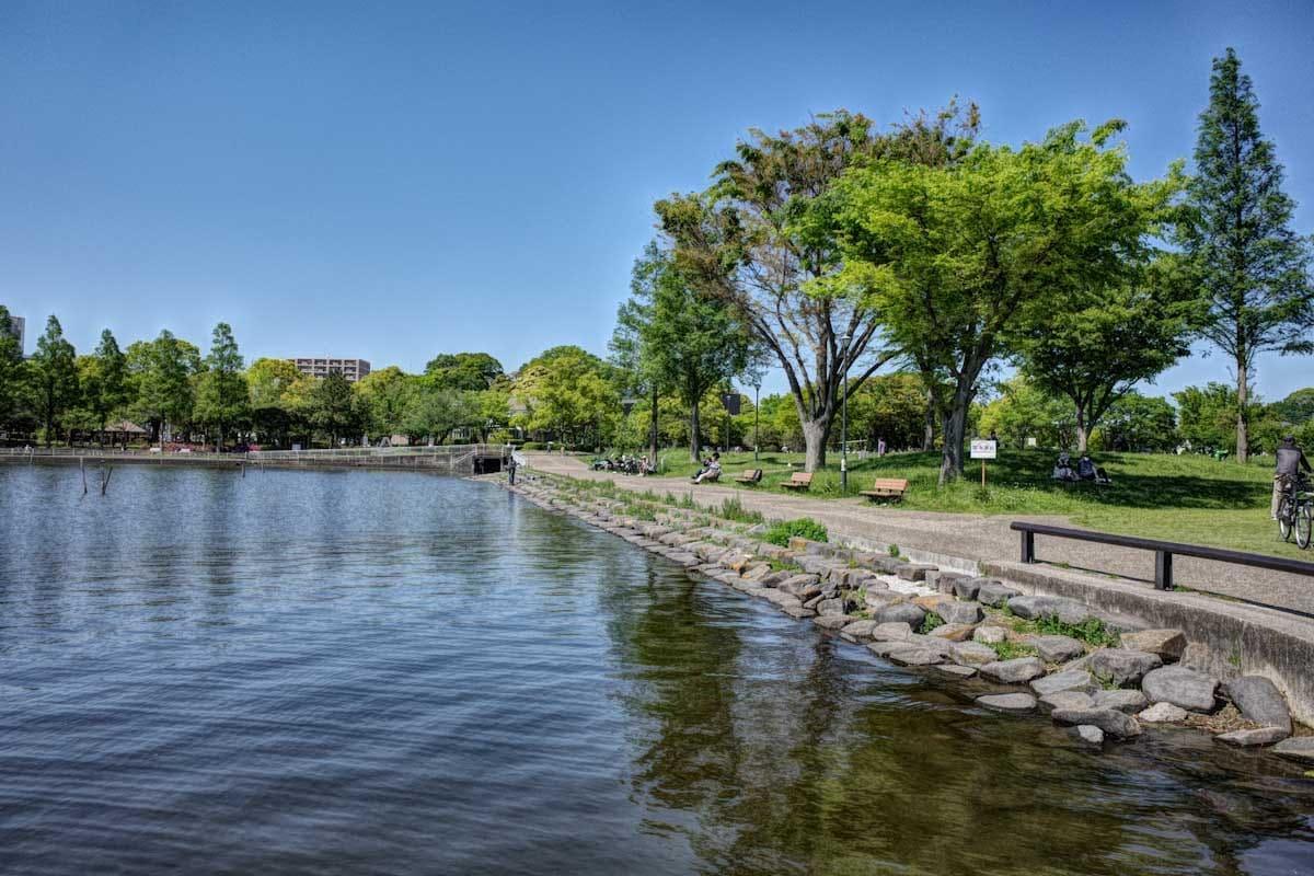 湖と公園広場