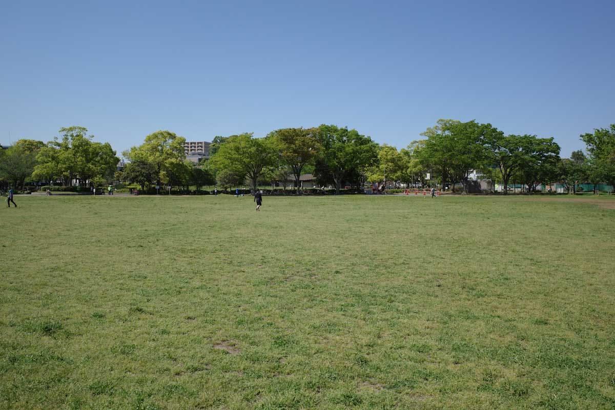 緑の芝生がキレイな公園広場
