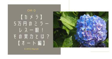 【OLYMPUS OM-D E-M10 MarkIII レビュー】写真検証【オート編】