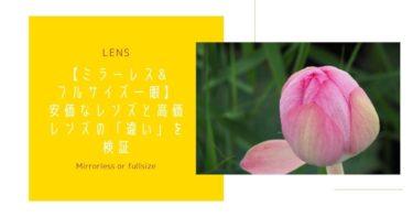 【ミラーレス&フルサイズ一眼】安価レンズと高価レンズの「違い」を検証