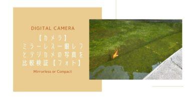 【比較】ミラーレス一眼レフとデジカメ写真を検証【実例あり】