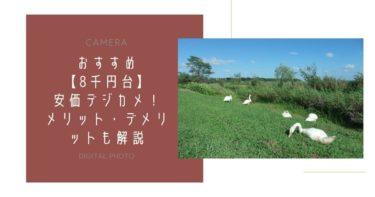 【KODAK】8千円台のお手頃デジカメ!メリット・デメリットも解説