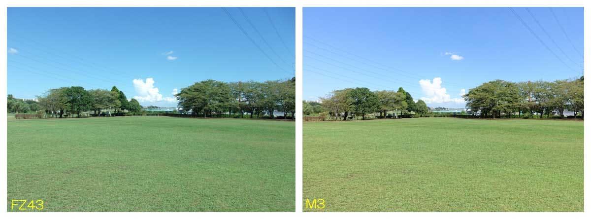 芝生が綺麗な公園風景