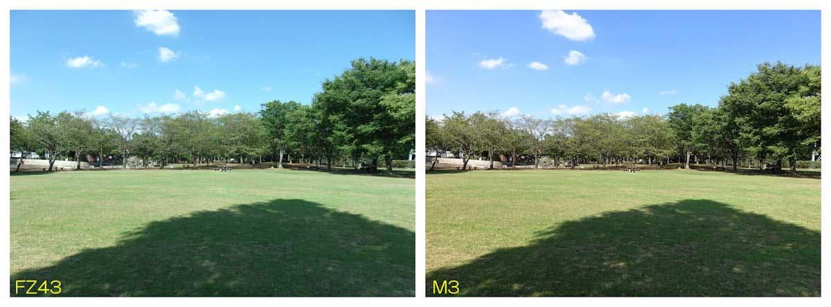 緑の芝生が綺麗な広場
