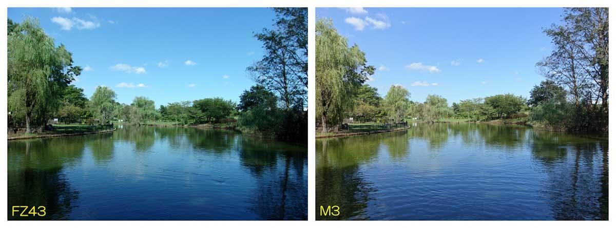 公園にある池