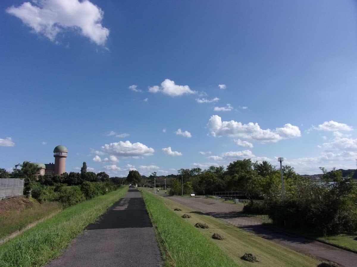歩道から見える青空