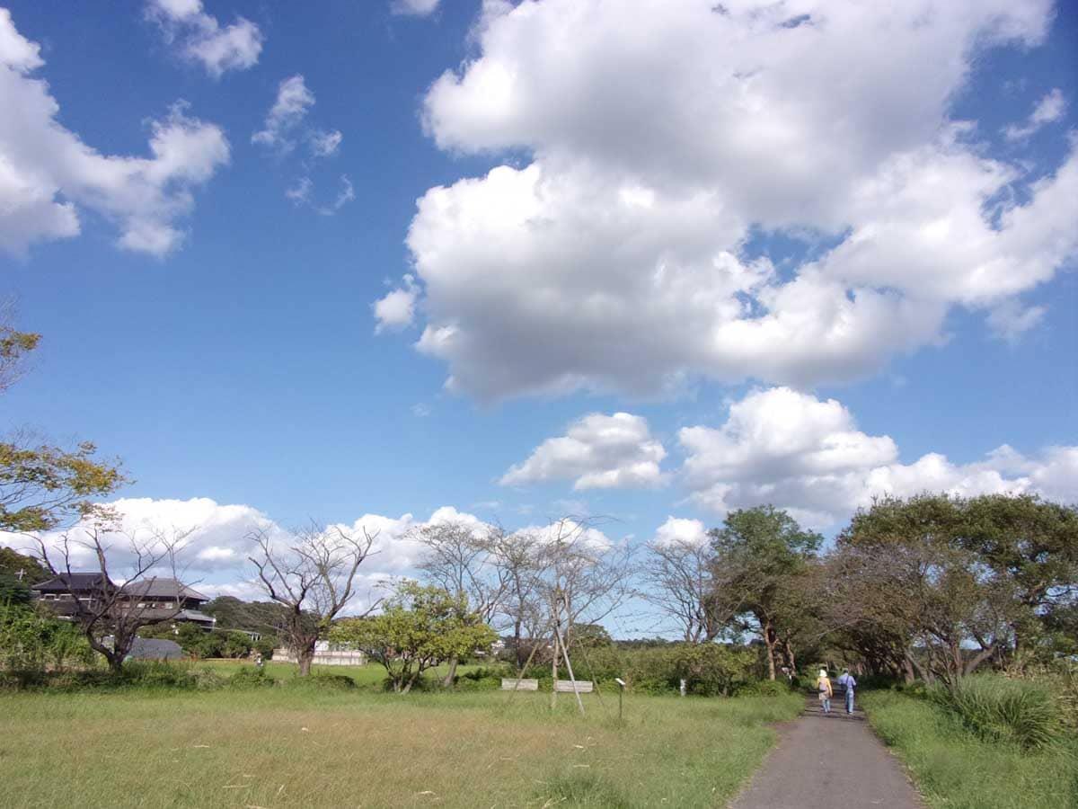歩道と青空