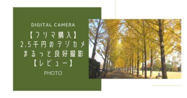 【フリマ購入】2.5千円のデジカメでまるっと良好撮影【レビュー】