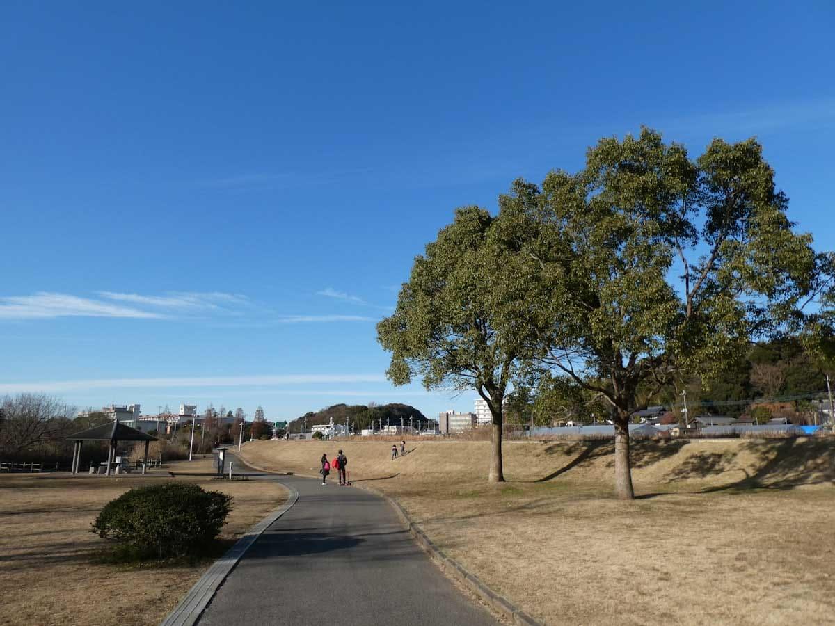 青空と公園の歩道
