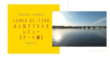 【ルミックス DC-TZ90】デジカメの本音レビュー【オート編】
