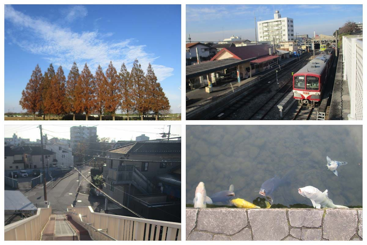 公園と街と電車のある景色