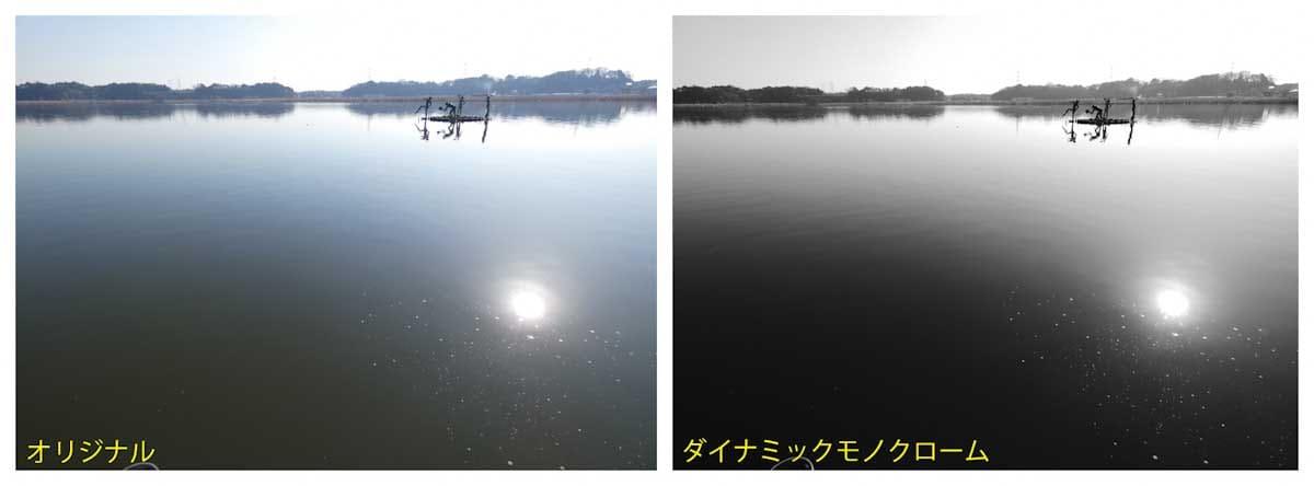 公園から見える大きな湖