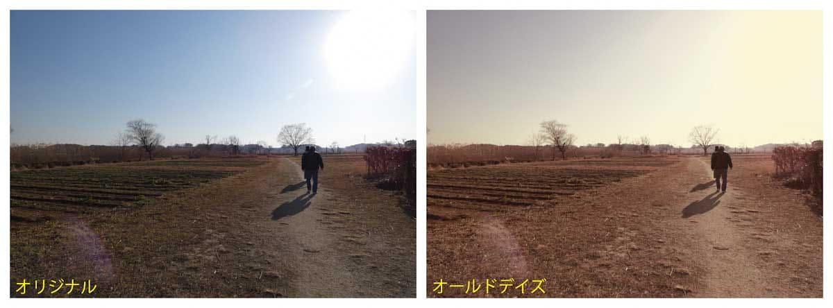 田んぼ道を歩く老夫婦
