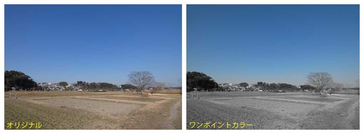 田畑と青空