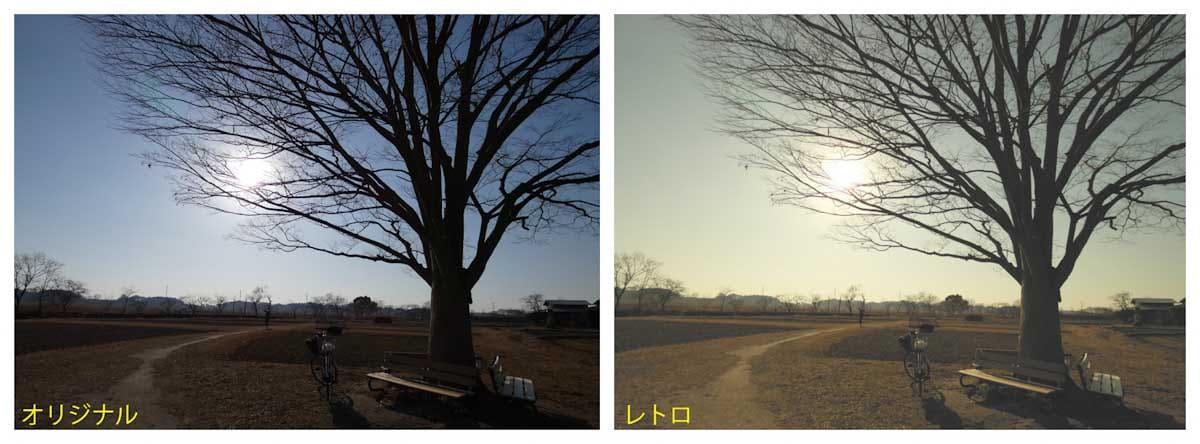 一本の木とベンチ