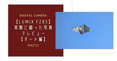 【ルミックスFZ85】実際に撮った写真でレビュー【オート編】