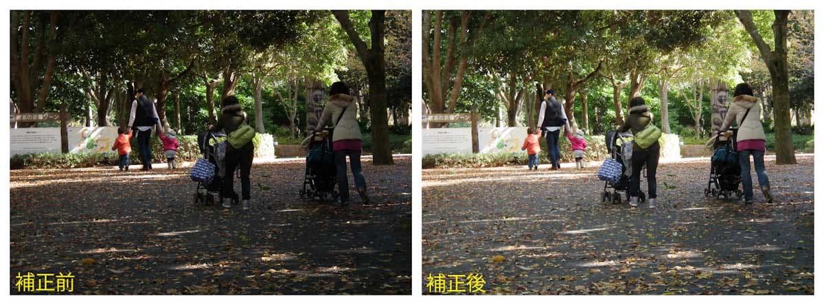 公園を歩くベビーカーを押す家族