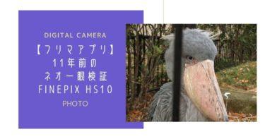 【ファインピクス HS10】11年前のネオ一眼を検証【フリマ】