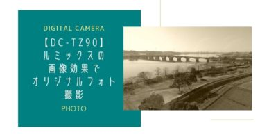 【DC-TZ90】ルミックスの画像効果でオリジナルフォト作成