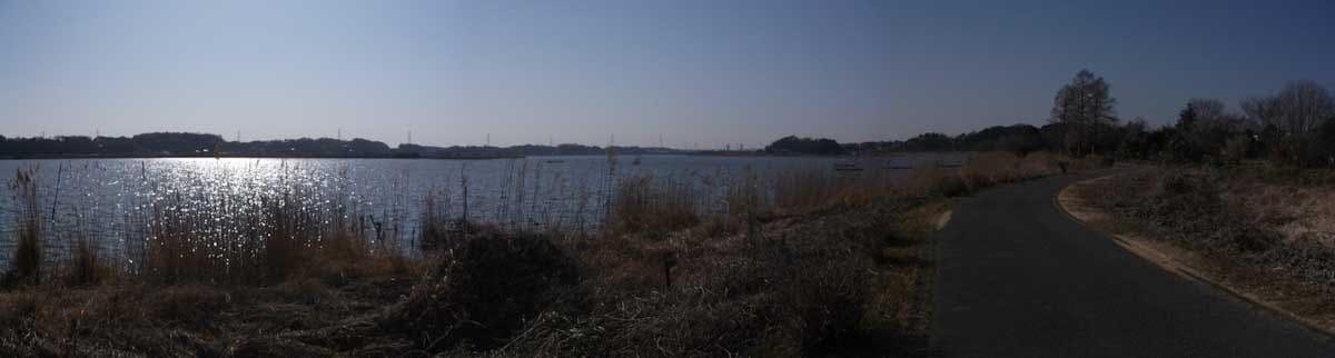 広大な湖の風景
