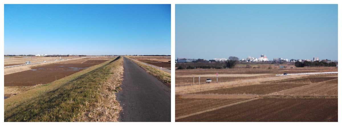 遠くに街が見える田園風景