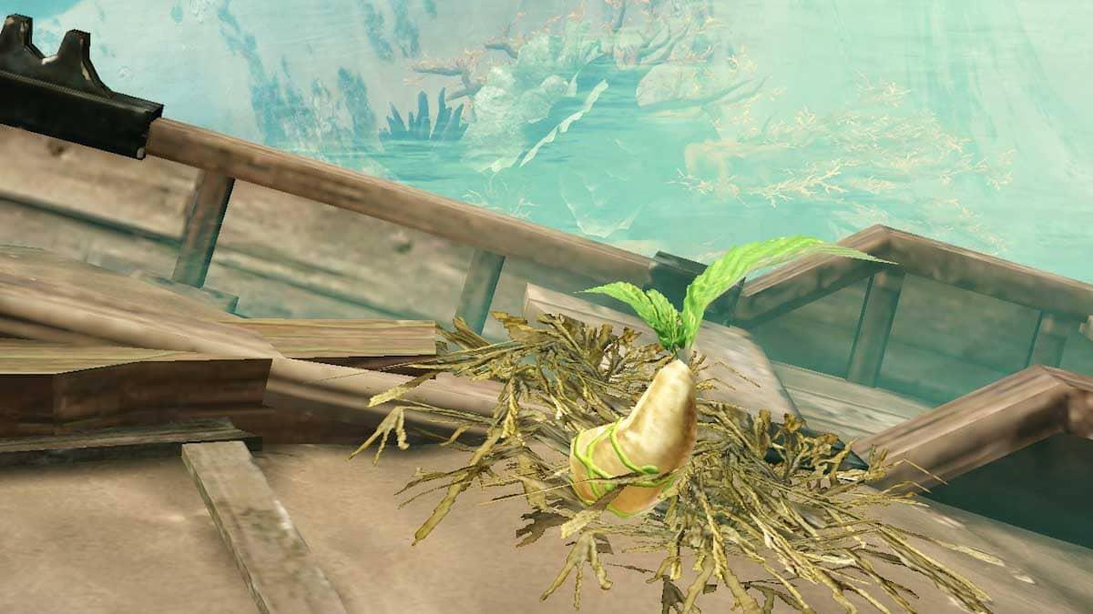 ゲーム内のアイテム「モココの種」の拡大写真