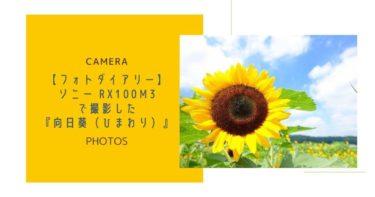 【フォトダイアリー】ソニー RX100M3で撮影した『向日葵(ひまわり)』